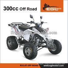 300cc engine atv with EEC