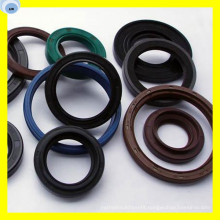 Single Lip Seal Double Lip Seal Oil Seal