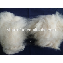 Mongolian cashmere fiber light grey 16.5mic 26-38mm