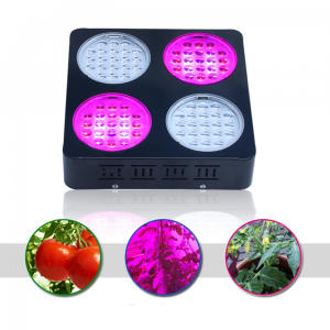 Groentegroeiende LED Grow Light