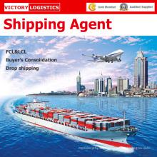 Agente de logística y envío de carga promotor agente/envío en China