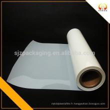 Fil de chien électrique film de polyester blanc laiteux