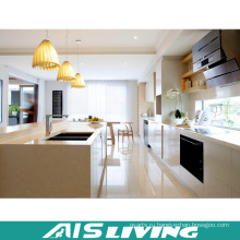 Европа Стиль мебель на заказ Кухонные шкафы ПВХ (АИС-K701)
