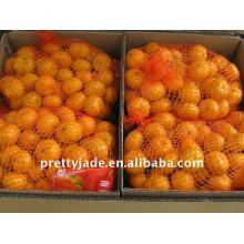 Chinois frais bébé mandarin