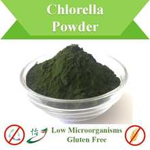 Low Microorganisms Glutenfreies Chlorella-Pulver