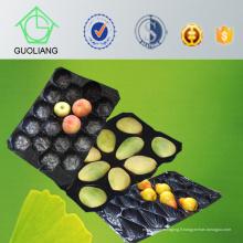La boursouflure thermoformée faite sur commande approuvée par FDA de catégorie comestible emballant le récipient de fruit en plastique 39X59cm