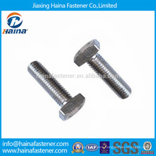 Stainless Steel 18-8 Full Thread Square Head Bolts