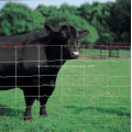 Heavy Zinc Coated Cattle Fence