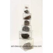 Suporte de exposição acrílico do tamanho diferente / cremalheira de exposição acrílica