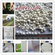 Main Product Nitrogen Fertilizer N21% Ammonium Sulfate (NH4) 2so4