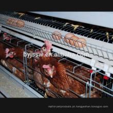 Uma gaiola de galinha de gaiola de tipo tipo frango para clima tropical