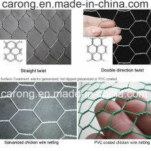 Гальванизированный / PVC Шестиугольное плетение провода, мелкоячеистая сетка, ограждения