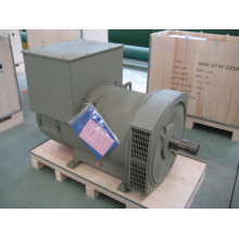 280 Kw Three Phase Brushless Alternator (JDG314E)