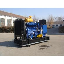 Economical and long running time 180 KW LPG Gas generator