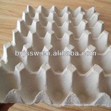 Paper Egg Tray / Egg Carton