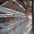new design chicken layer cage for chicken                                                                         Quality Choice