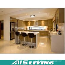 Projeto lustroso modular da mobília dos armários de cozinha do revestimento (AIS-K365)