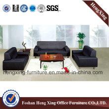 Modern Sofa / Leather Sofa / Office Sofa (HX-SN050)
