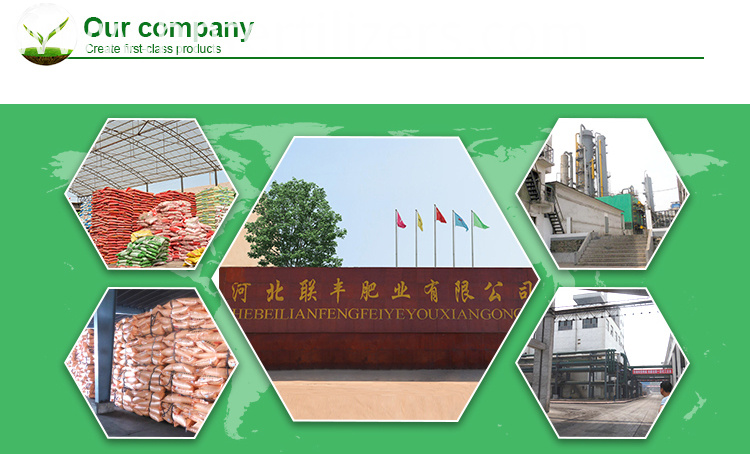 fertilizer factory