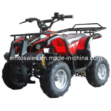 500W-800W Big Electric ATV Quads, Electric Scooter (ET-EATV002)