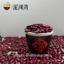 2014 Crop Dard Red Kidney Beans Prix du marché