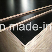 21mm Plywood with Poplar Core WBP Glue First Grade