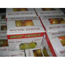 Jugo de oro pomelo en China