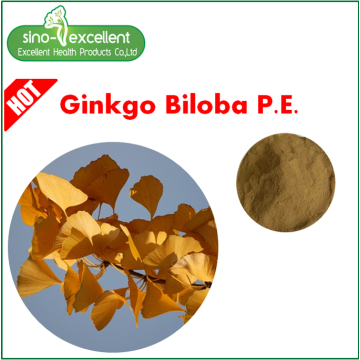 Natural Flavones 24% Ginkgo Biloba Leaf Extract