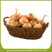 Fresh yellow onion exporters in China