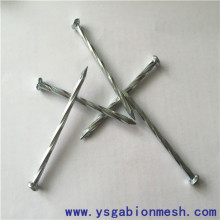 Low price twisted/spiral shank steel concrete nails