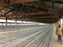 service overseas chicken farm winch