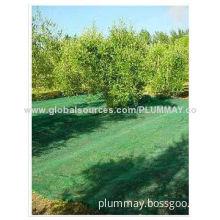 Olive Net, Panel for Olive Harvesting