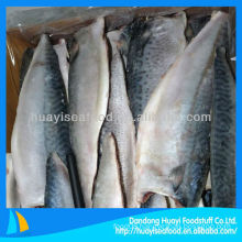 fresh frozen new pacific mackerel fillet