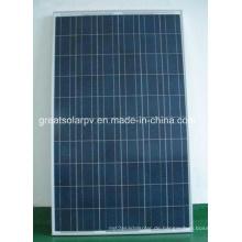 High Efficiency 250W Poly Solar Panel mit günstigen Preis Made in China