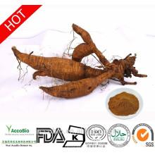 Hochwertige 100% natürliche Kudzu Extrakt Pulver Isoflavone