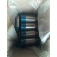 Acero inoxidable Swage Nipple A403