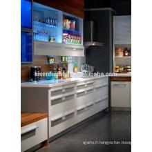Cabinet de cuisine professionnelle en Chine avec standard de haute qualité