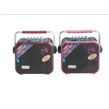 Portable Trolley Mini Speaker 6.5inch with FM Radio CE F83