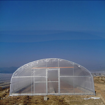 Agriculture Tunnel PE Polytunnel Greenhouse à vendre
