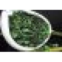 Laço verde Chá de Kuanyin (chá do Novo-tipo Oolong)