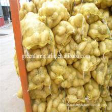 Forme ronde et type de culture commune pomme de terre fraîche