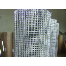 Hot-Dipped Galvanized Iron Wire Mesh in Good Quality