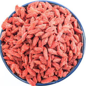 O maior wolfberry chinês selvagem Top Goji Berries Organic Certificated alimento verde