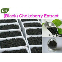 Extrato de Chokeberry (Anthocyanin5% -70%) CAS: 18466-51-8
