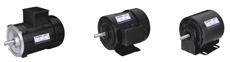 NEMA Standard Three Phase Asynchronous Electric Motor