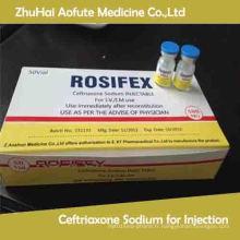 Médecine de santé Ceftriaxone Sodium pour injection 0.5g