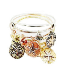 VAGULA New Arrival Alex and Ani Classical Bangle