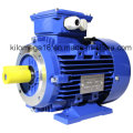 Three Phase Cast Iron Electric Motor with Ce Certificate