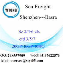 Shenzhen Port Sea Freight Frakt till Basra