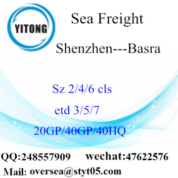 Shenzhen Port Sea Freight Shipping Para Basra